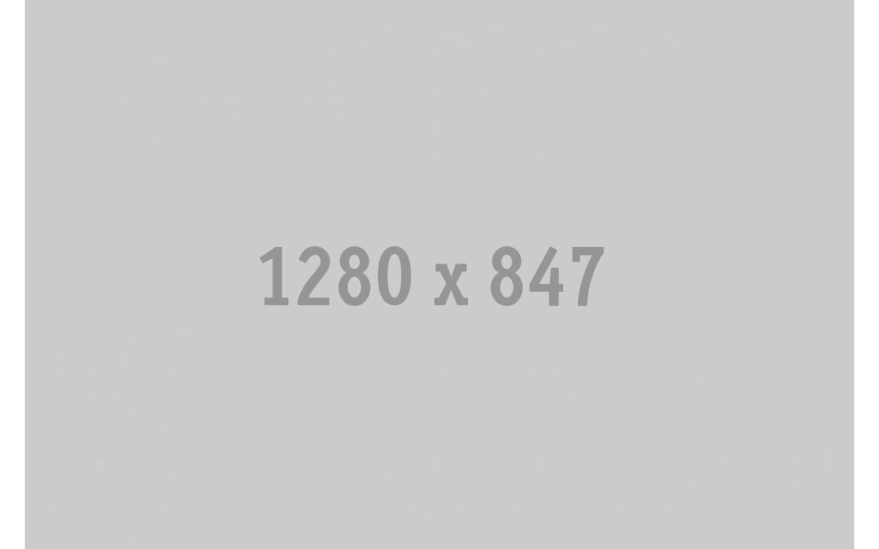 TSC TTP 247 203DPI標籤機